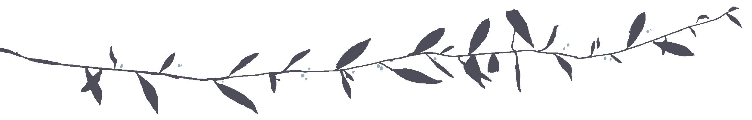 Fleur d'O